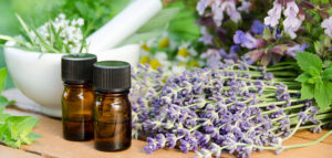 7 Homeopathic Remedies for Your First-Aid Kit